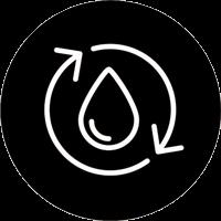 Blood Circulation Icon